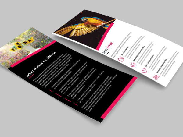 Photography Business PSD DL Brochure Template