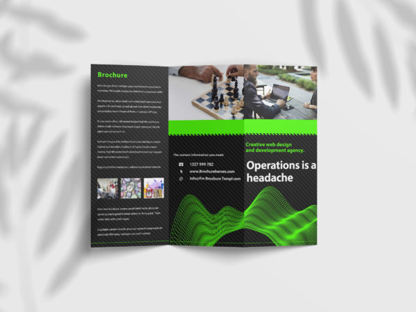 Business Tri Fold Brochure Design Template